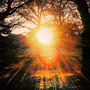 FireShot Capture 2 - AJANTA (@ajantajudd) • Instagram ph_ - https___www.instagram.com_p_buosdmzdovr_