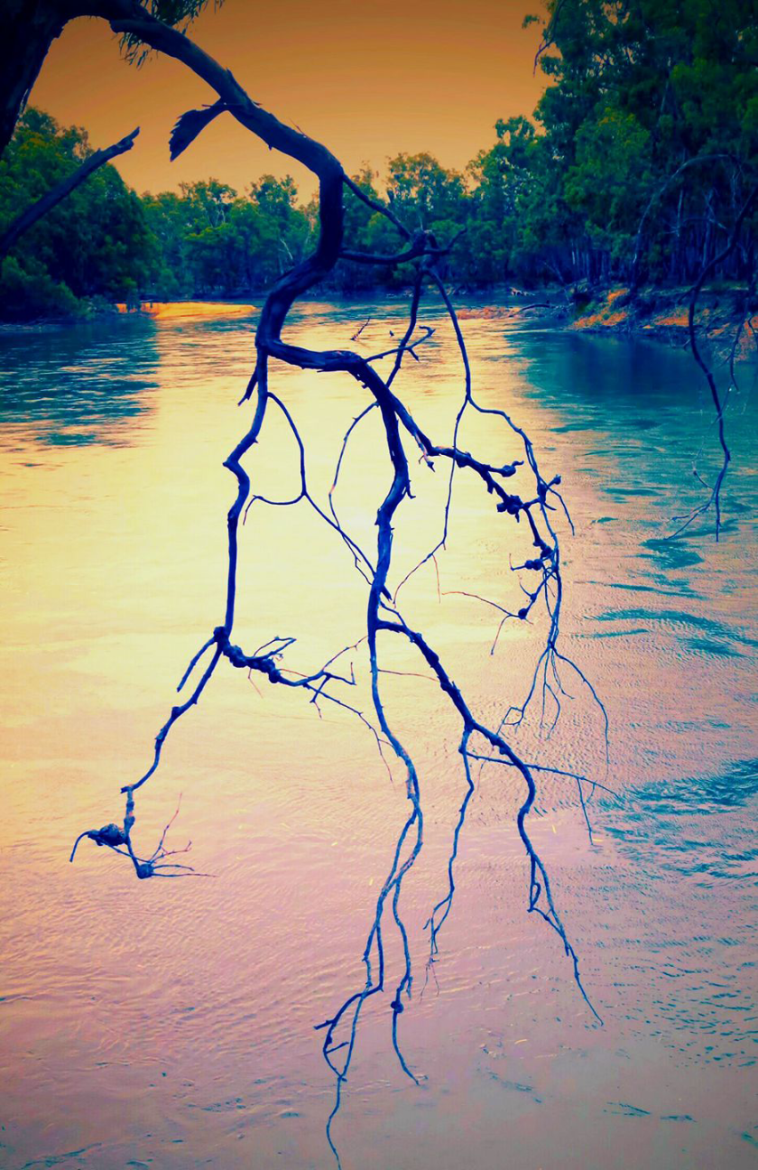murrumbidgee_magic